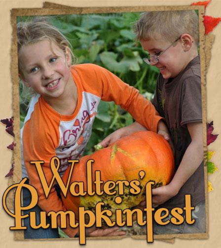 Walters Pumpkin Patch Corn Maze And Family Farm In El Dorado