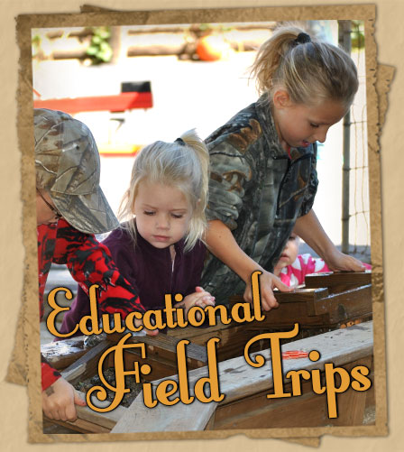 Plan a fall field trip your students will remember for years!